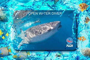 PADI Card Replacement